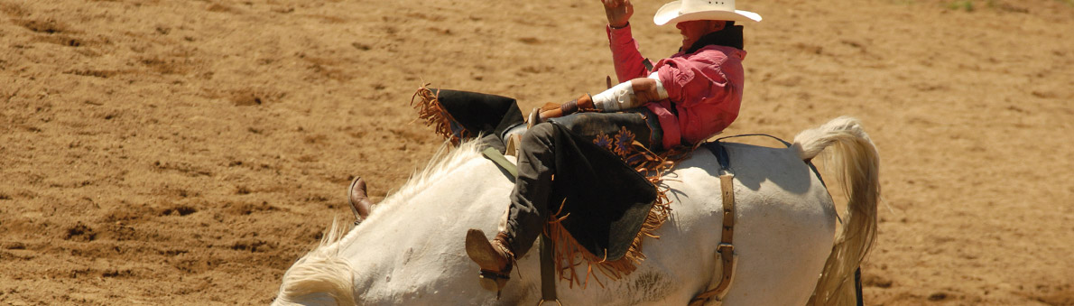 Cowboy on a bull, representing the conflict associated with a divorce, a key reason why many couples prefer uncontested, out of court Collaborative divorce